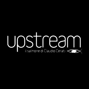 Salmone-Upstream